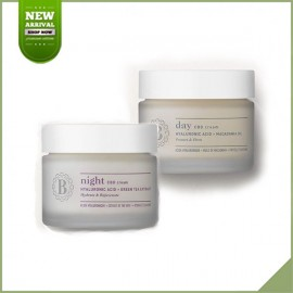 Blossom Skincare cbd Tag und Nacht Creme Packung