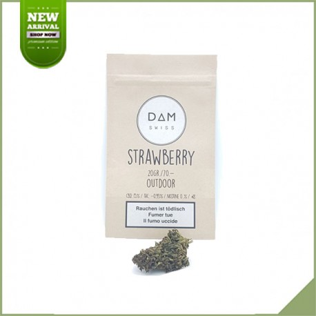 Fleurs de cannabis CBD Dam Swiss Strawberry