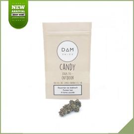 CannabisBlüten CBD Dam Swiss Candy